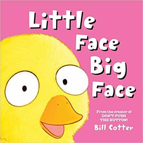 Little Face Big Face book