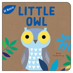 Little Owl book