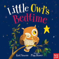 Little Owl's Bedtime book