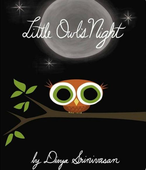 Little Owl's Night book