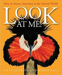 Look at Me!: How to Attract Attention in the Animal World book