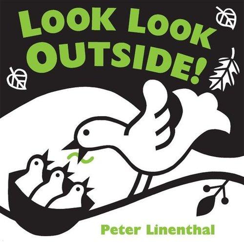 Look Look Outside! book
