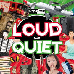 Loud and Quiet book