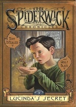 Lucinda's Secret book