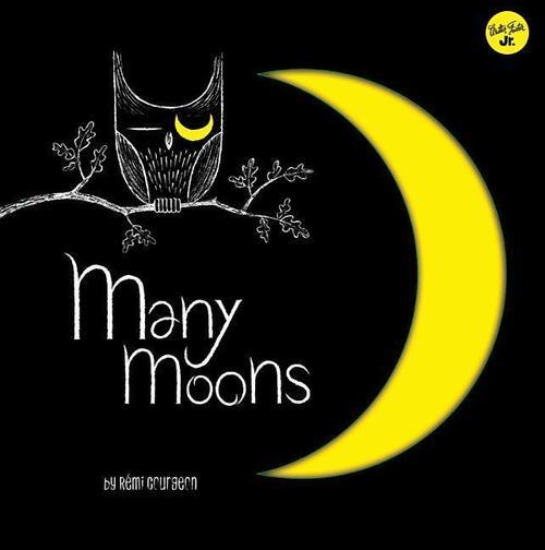 Many Moons book