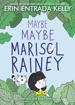 Maybe Maybe Marisol Rainey book