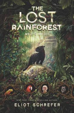 Mez's Magic book