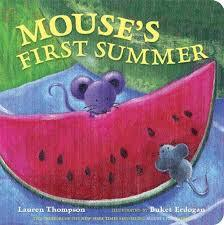 Mouse's First Summer book