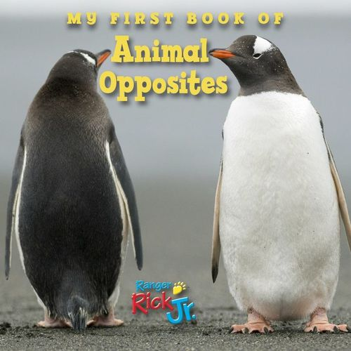 My First Book of Animal Opposites book