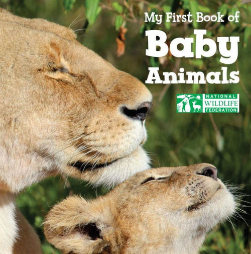 My First Book of Baby Animals book