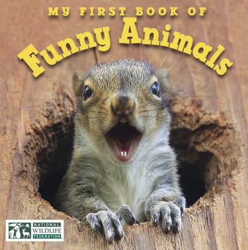 My First Book of Funny Animals book