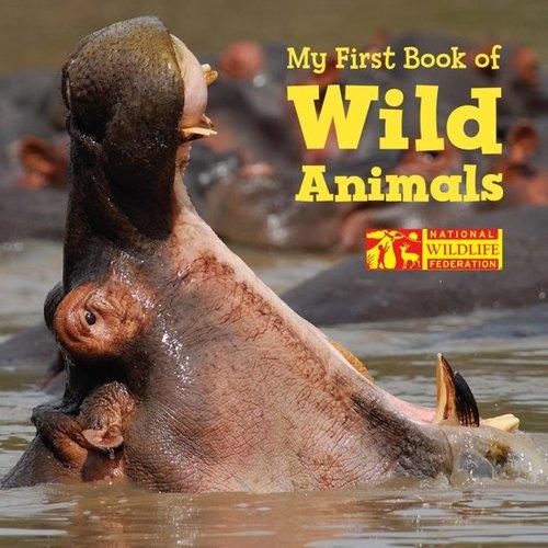 My First Book of Wild Animals book