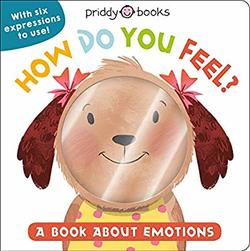My Little World: How Do You Feel?: A Book About Emotions book
