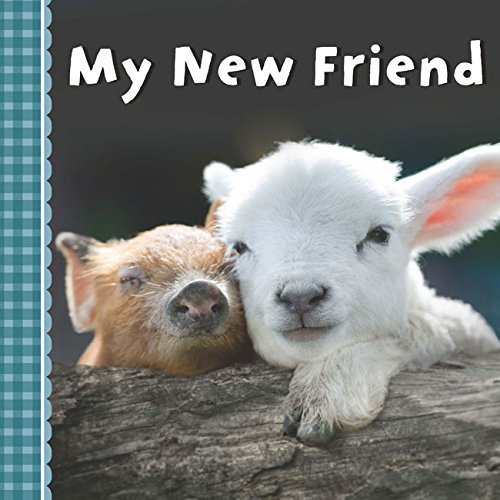 My New Friend book