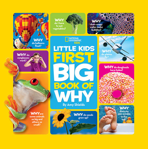 National Geographic Little Kids First Big Book of Why book