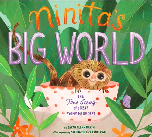 Ninita's Big World book
