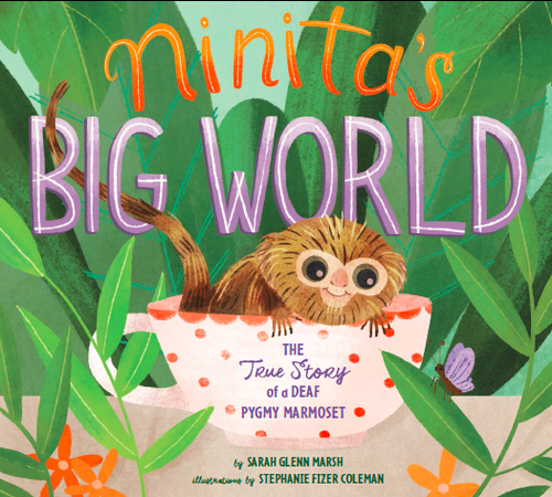 Ninita's Big World Book