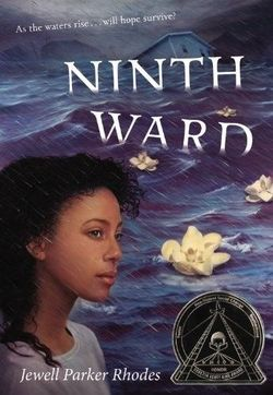 Ninth Ward book