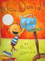 No, David! book