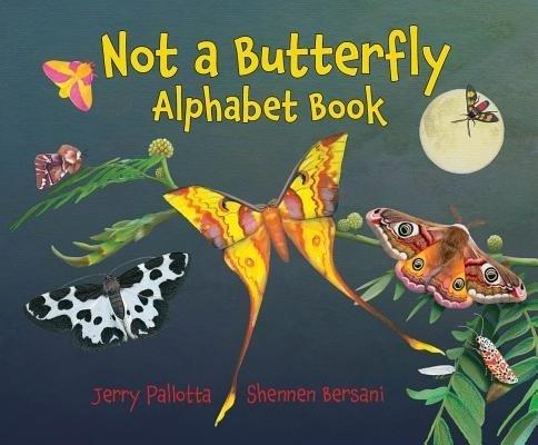 Not a Butterfly Alphabet Book book