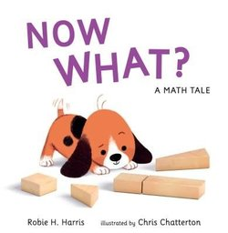 Now What? a Math Tale Book