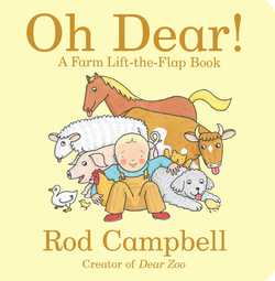 Oh Dear! book