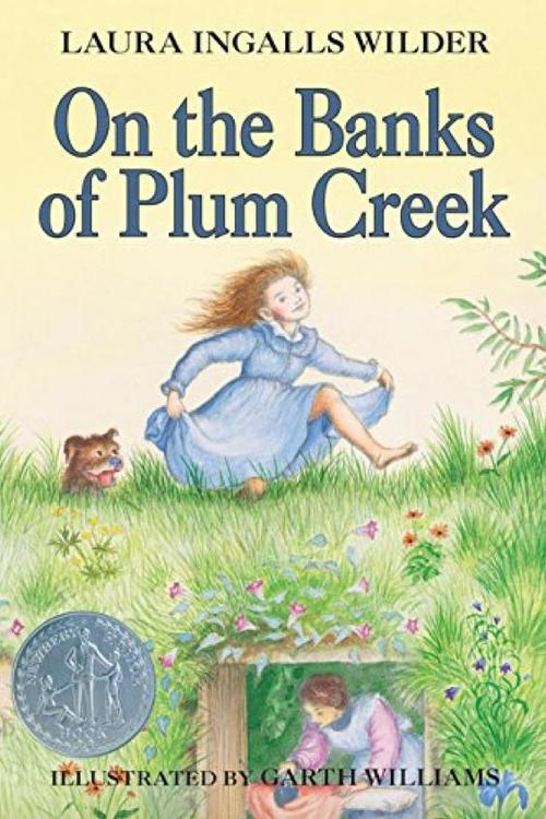 On the Banks of Plum Creek book