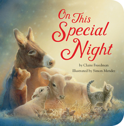 On This Special Night book