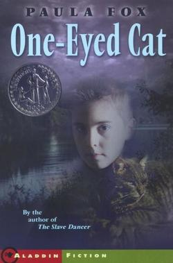 One-Eyed Cat book