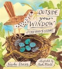 Outside Your Window book