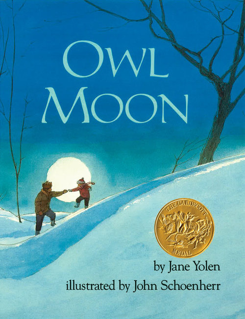 Owl Moon book