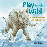 Play in the Wild: How Baby Animals Like to Have Fun book