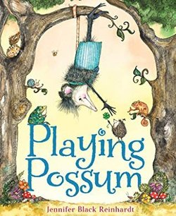 Playing Possum book