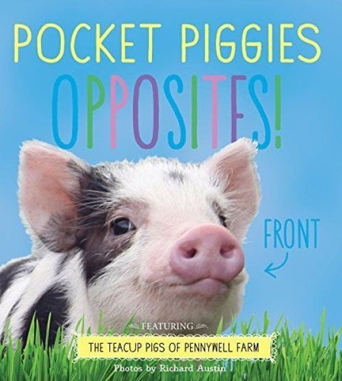 Pocket Piggies Opposites! book