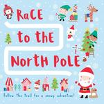 Race to the North Pole book