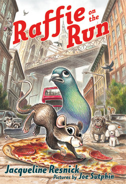 Raffie on the Run Book