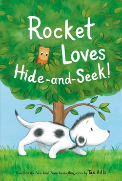 Rocket Loves Hide-And-Seek! book