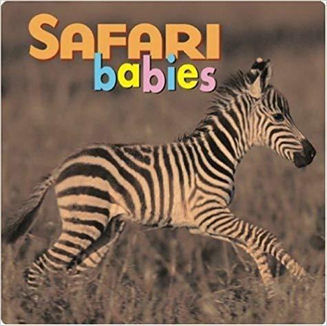 Safari Babies (Animal Babies) Book