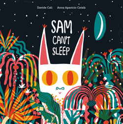 Sam Can't Sleep book