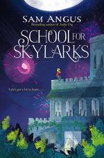 School for Skylarks book