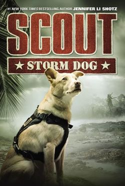 Scout: Storm Dog book