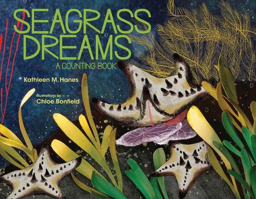 Seagrass Dreams book