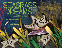 Seagrass Dreams book