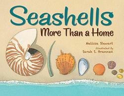 Seashells book