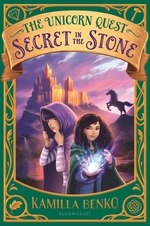 Secret in the Stone book