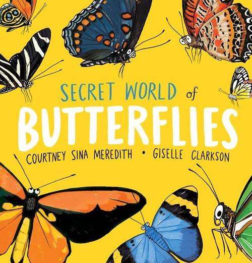 Secret World of Butterflies book