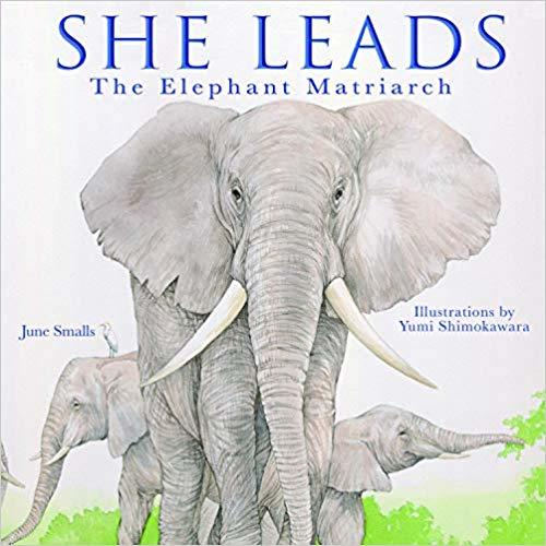 She Leads: The Elephant Matriarch book