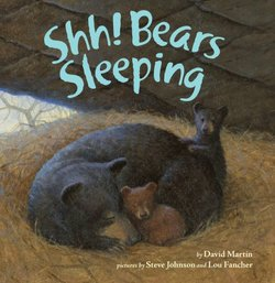 Shh! Bears Sleeping Book