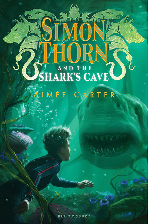 Simon Thorn and the Shark's Cave Book