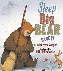 Sleep, Big Bear, Sleep! book